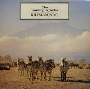 1981C - Kilimanjaro