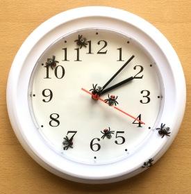 Time Flies 6